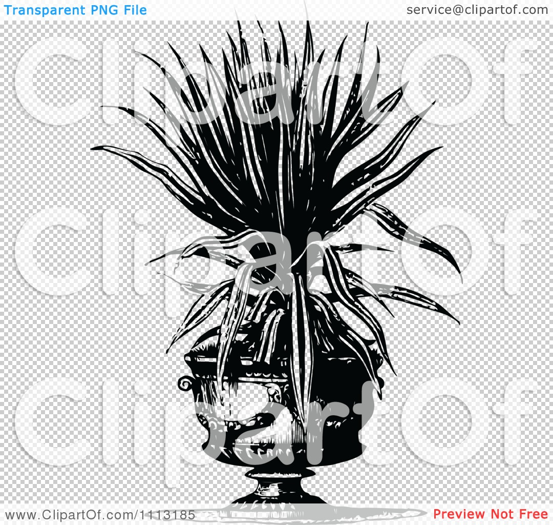 Clipart Vintage Black And White Potted Snake Plant.