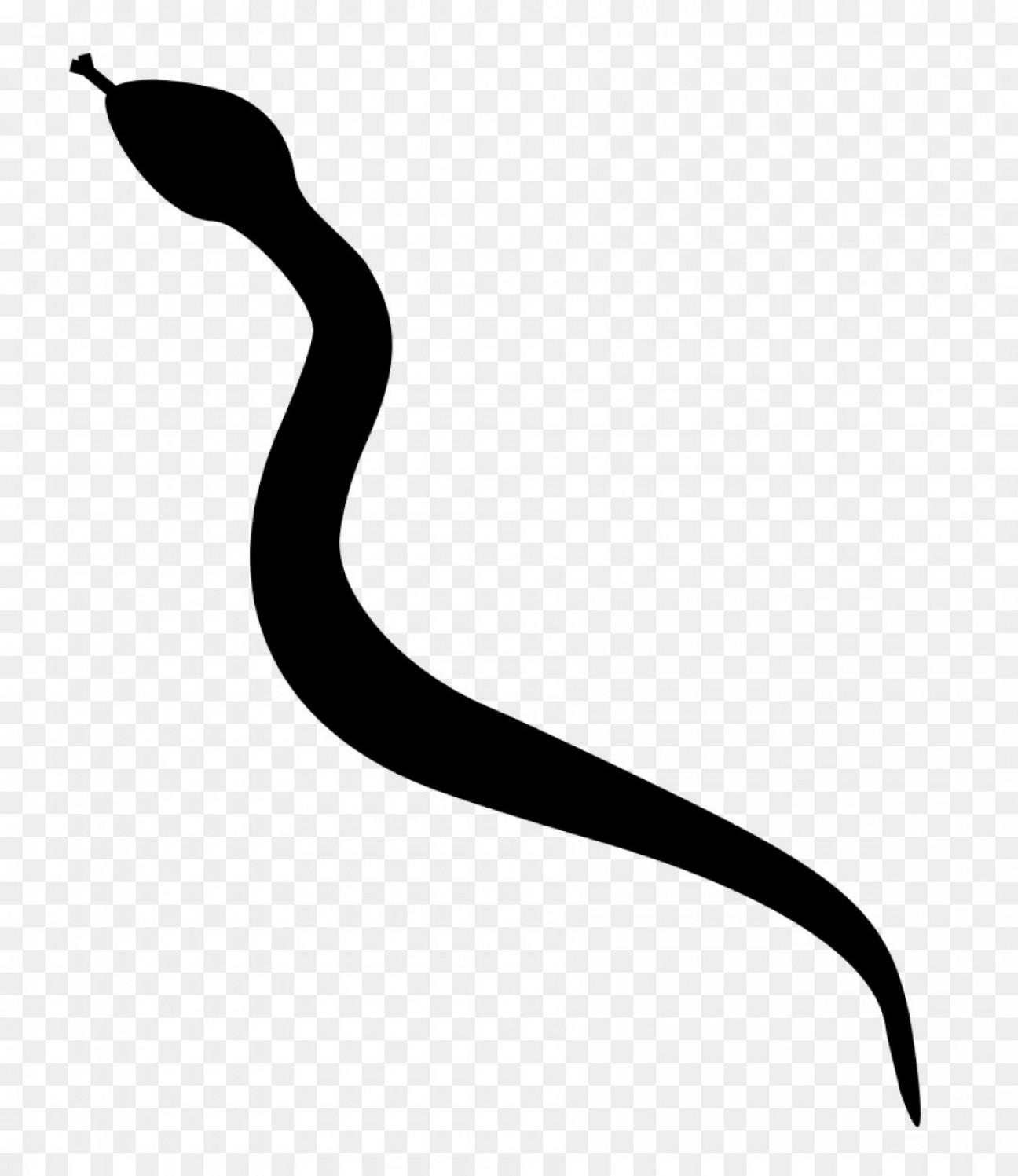 Png Snake Silhouette Clip Art Snake.