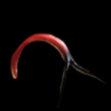 snake tongue.