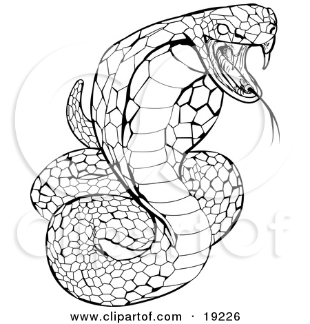 Clipart Illustration of a Striking Venomous Cobra Snake by.