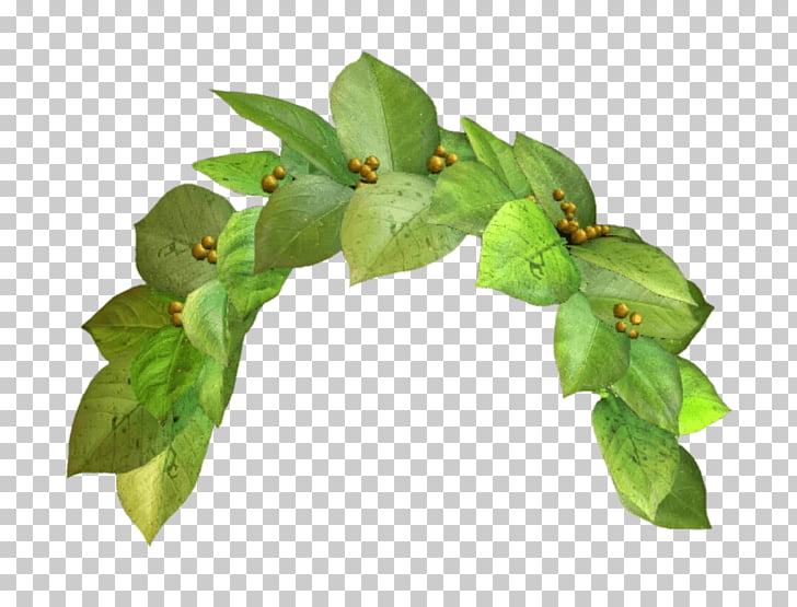 Snapchat Filter Green Crown, green plant PNG clipart.