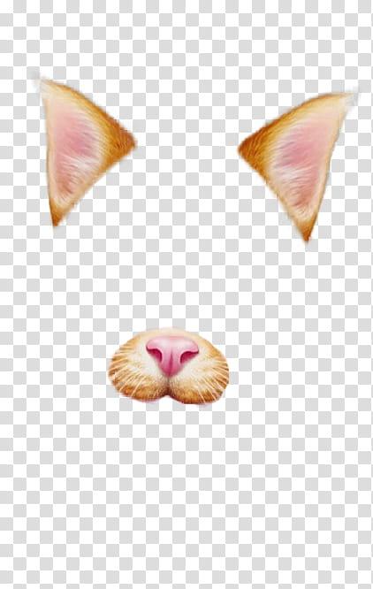 Snapchat Filters Part , orange cat face transparent.