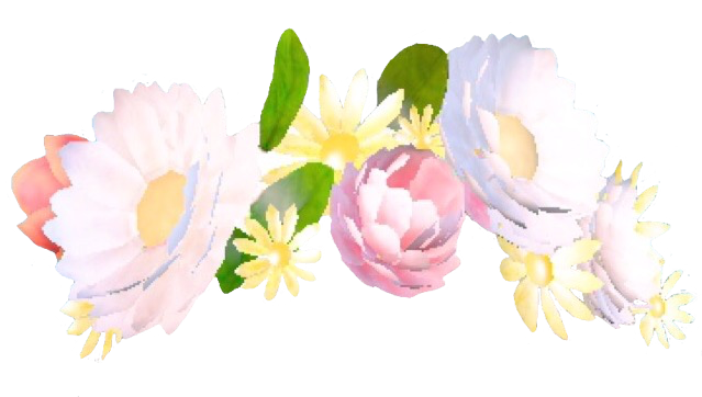 Snapchat Flower Crown Like Or Reblog If Using x.