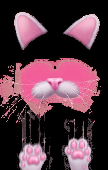 Snapchat Filter Kitten transparent PNG.