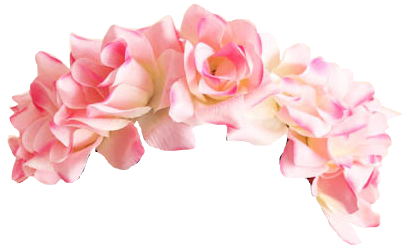 Download Free png Snapchat Flower Crown PNG Pic.