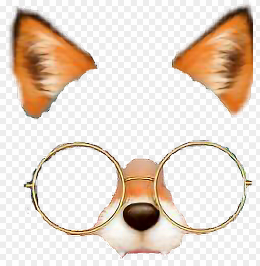 fox foxfilter glasses filter.
