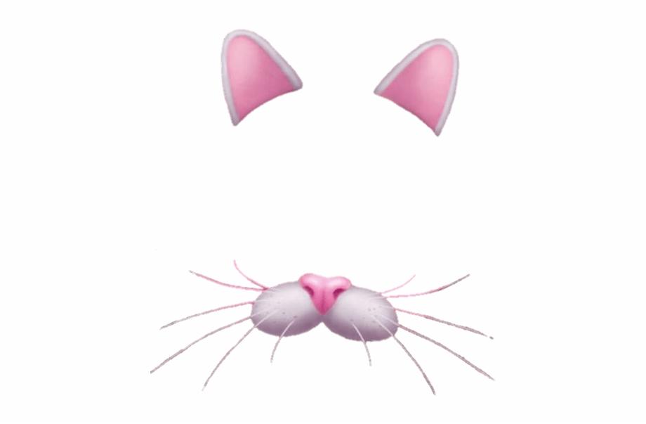 Snapchat Cat Filter Png {#155875}.
