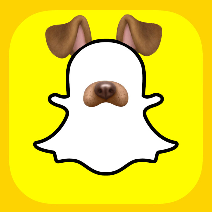 Why the Puppy Filter Makes Everyone Look Good.