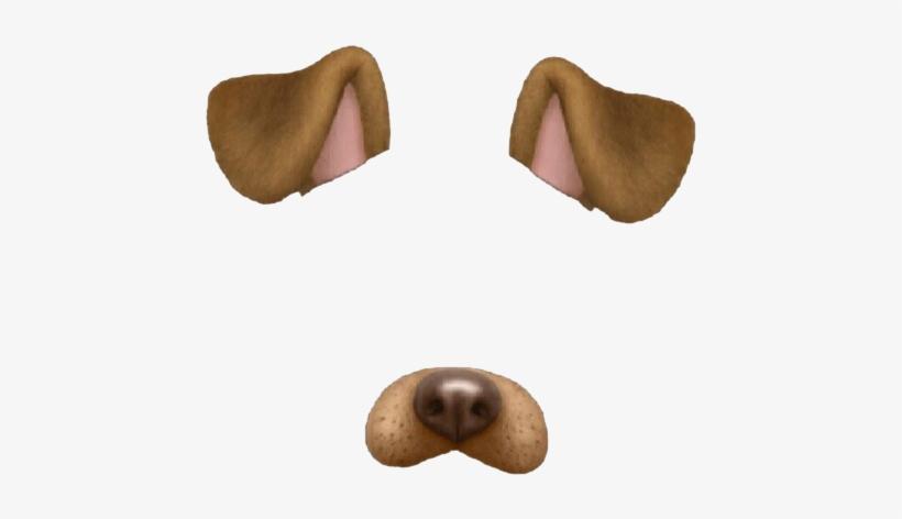 Dog Puppy Snapchat Cat We Heart It.