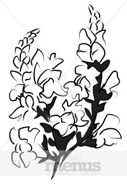 Snapdragon Blossom Clipart.