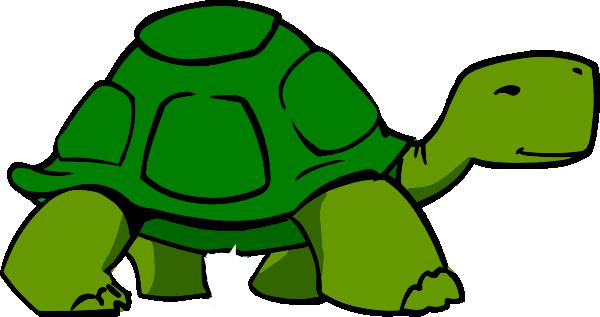 Turtle Cartoon.