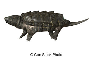 Snapping turtle Illustrations and Stock Art. 25 Snapping turtle.