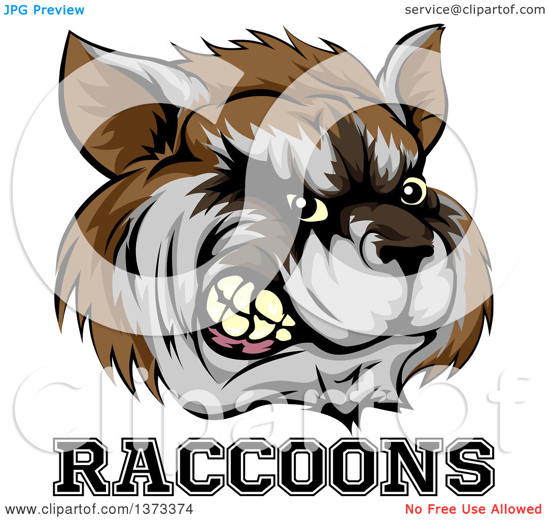 Clipart of a Snarling Aggressive Raccoon Mascot Head and Text.