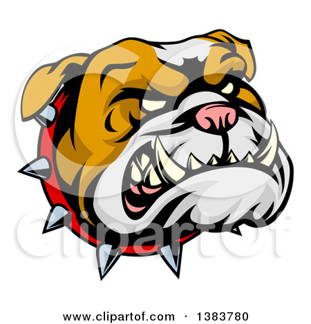 Clipart of a Snarling Gray Bulldog Mascot Face with a Spiked.