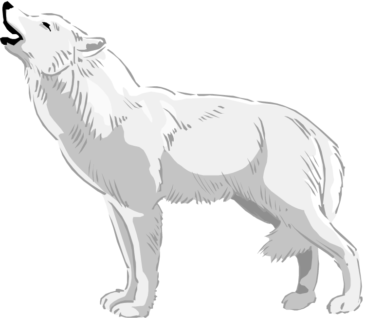 HD Wolves Clipart Real Wolf.