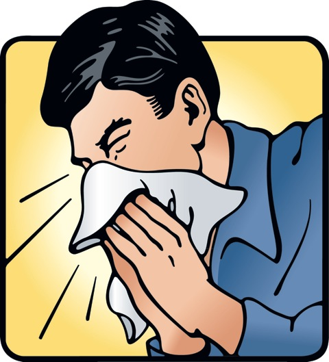Free Sneezing Cliparts, Download Free Clip Art, Free Clip.