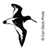 Snipe Vector Clipart EPS Images. 38 Snipe clip art vector.