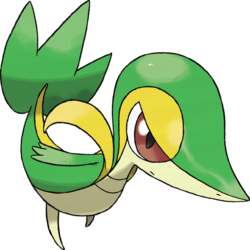 Snivy (Pokémon).