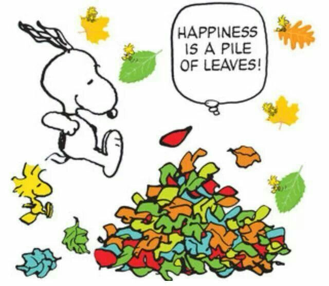 17 Best images about Snoopy on Pinterest.