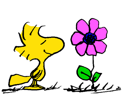 Peanuts clipart spring, Peanuts spring Transparent FREE for.