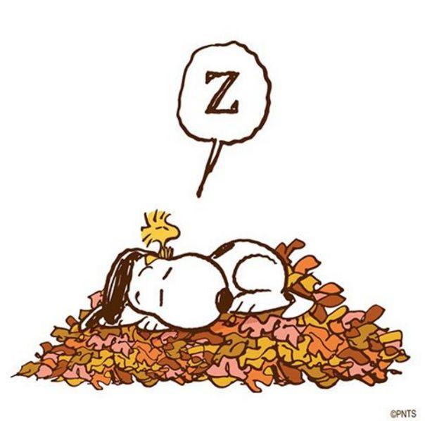 Peanuts clipart autumn.