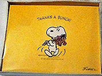 Amazon.com: Vintage Peanuts Snoopy Thank You Cards/Notes.