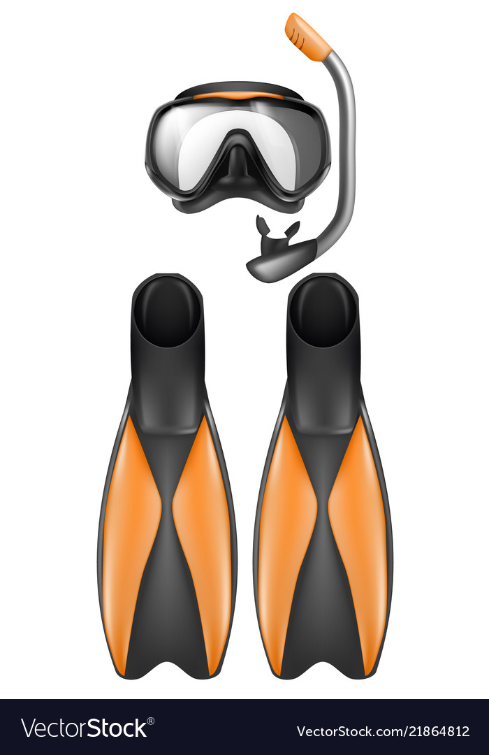 Diver equipment snorkel mask and flippers.