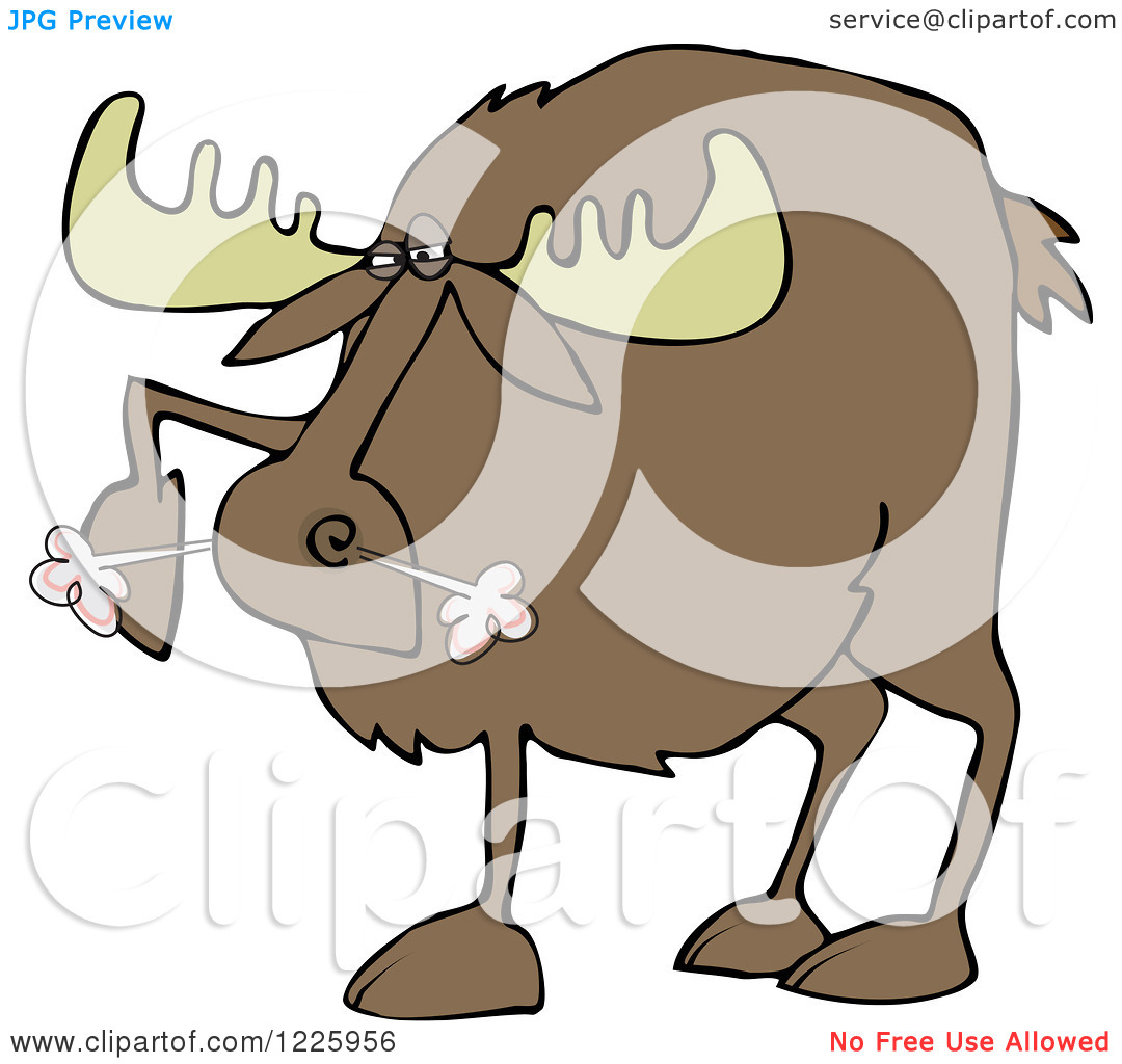 Clipart of a Snorting Angry Moose.
