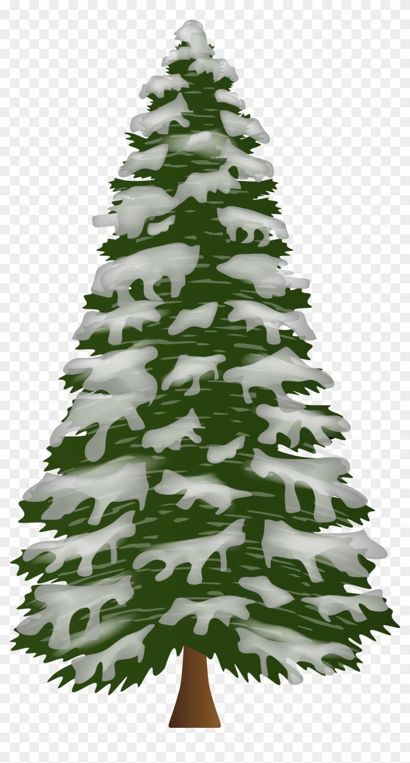 Pine Tree With Snow Png Clip Art Gallery Yopriceville.