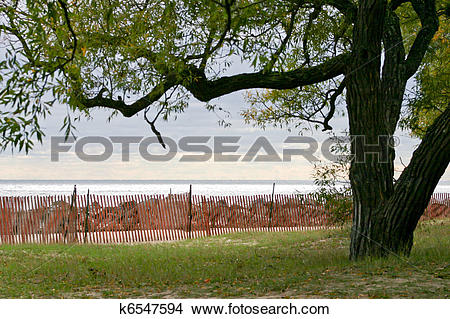 Stock Photo of Snow fence k6547594.