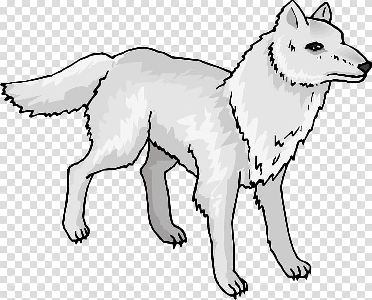 Arctic wolf Mexican wolf Arctic fox , Snow Seal transparent.