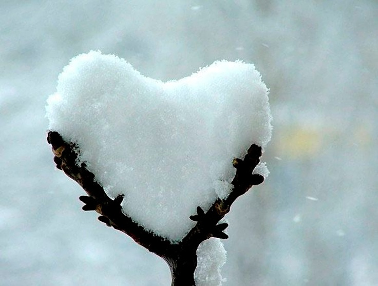 1000+ images about snow heart on Pinterest.