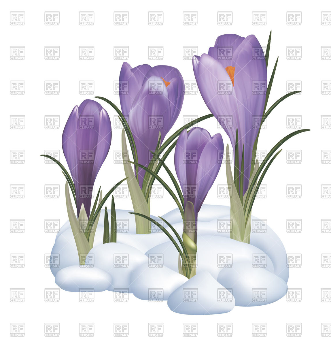 Snow Flowers Clipart 20 Free Cliparts Download Images On