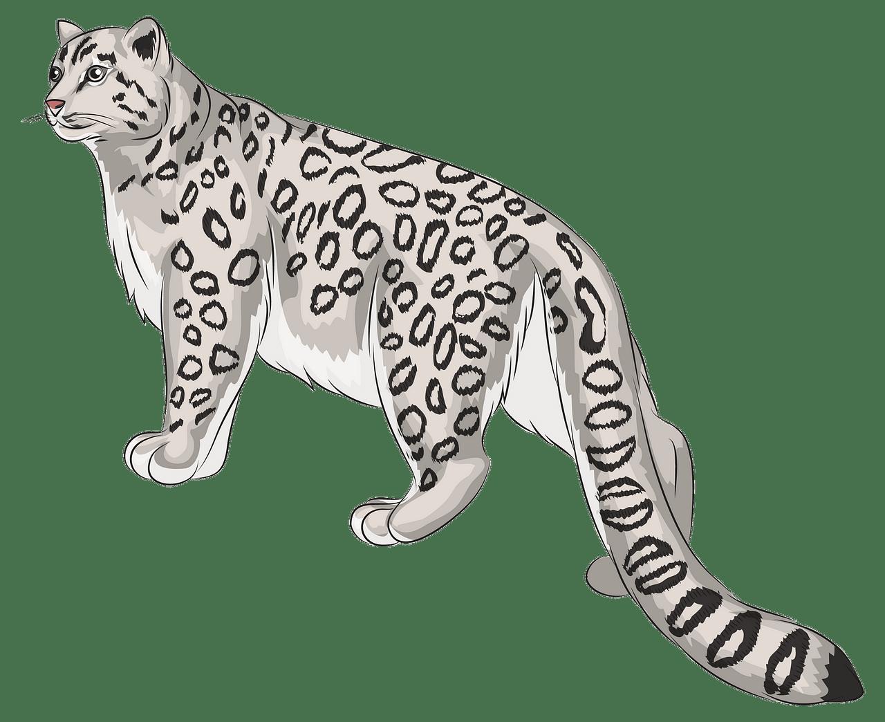 Snow Leopard. Free download..