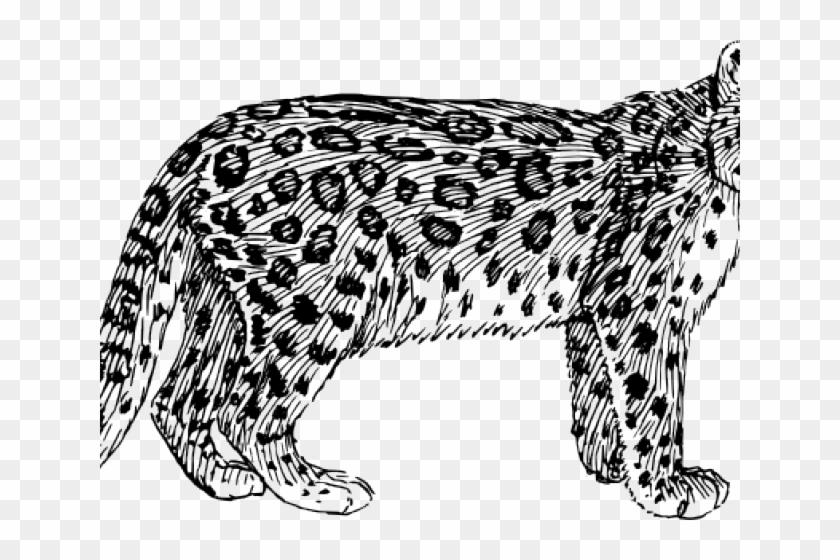 Black Leopard Cliparts.