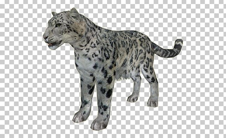 Snow Leopard Cheetah Zoo Tycoon 2 Felidae PNG, Clipart.