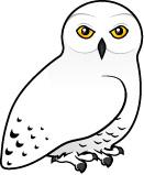 Snowy Owl Cartoons Clipart.
