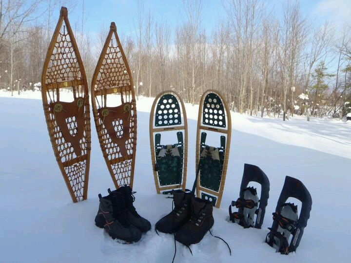 1000+ images about Snow shoes on Pinterest.
