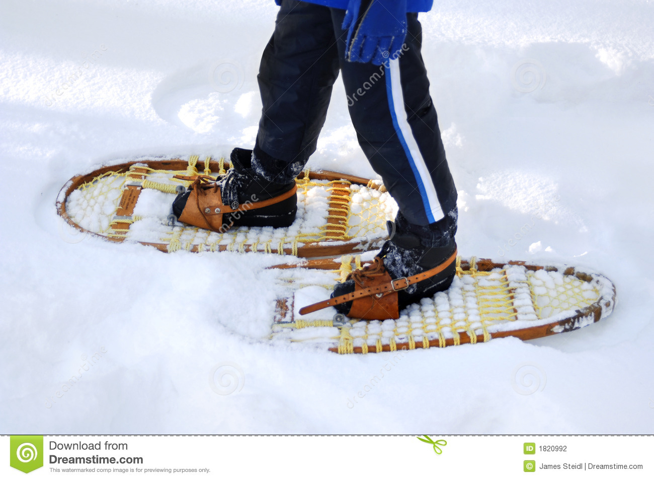 Snow Shoeing Stock Photography.
