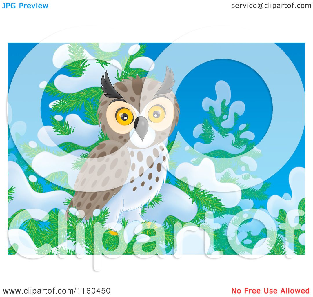 Cartoon of a Spotted Owl Perched in a Snow Flocked Tree.