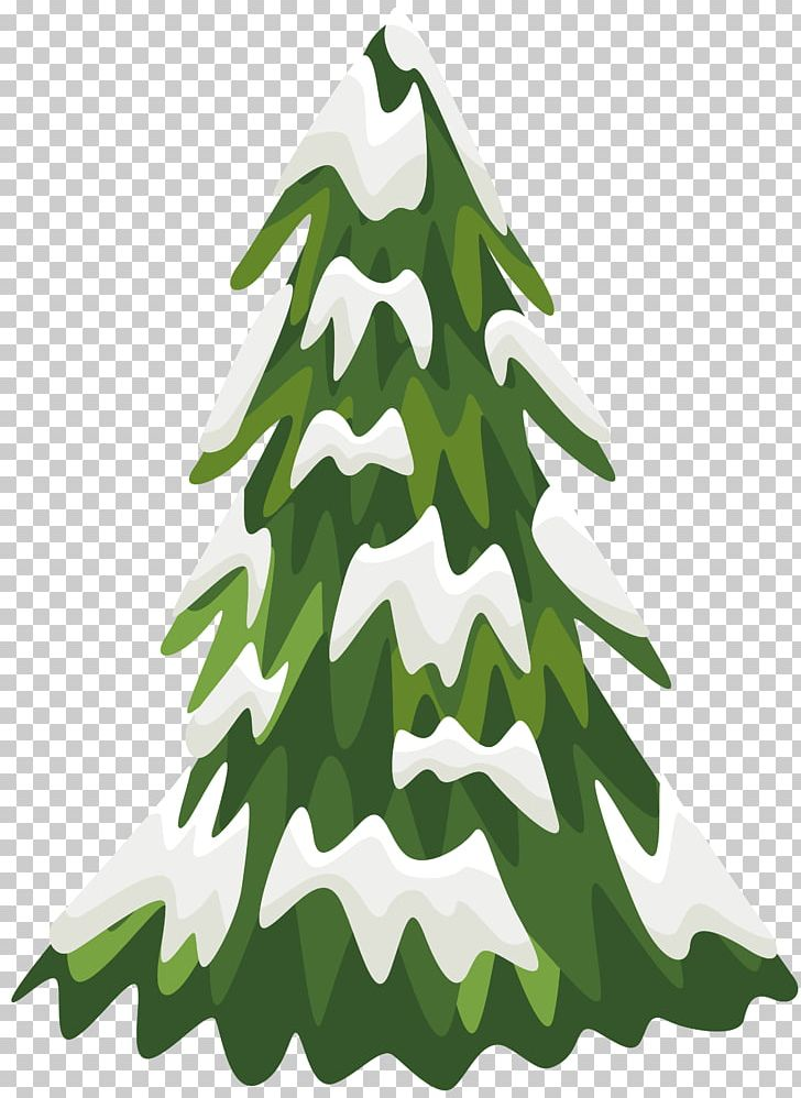 Pine Snow Tree PNG, Clipart, Blog, Branch, Christmas.
