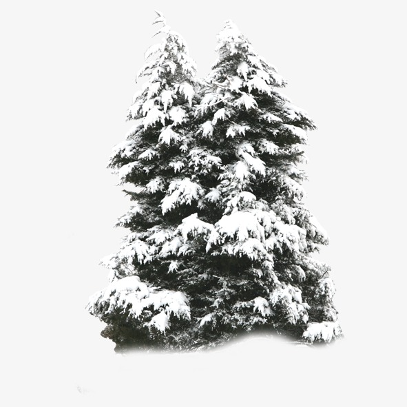 Download Free png Snowy Tree Png (94+ images in Collection.