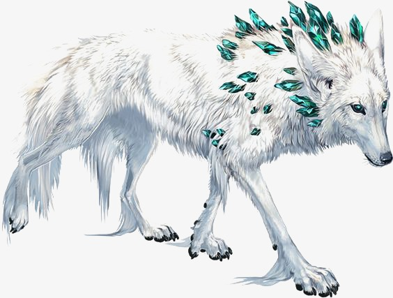 White wolf PNG clipart.
