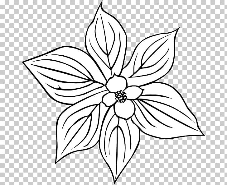 Rosa acicularis Flower Petal , Snowdrop Tattoo PNG clipart.