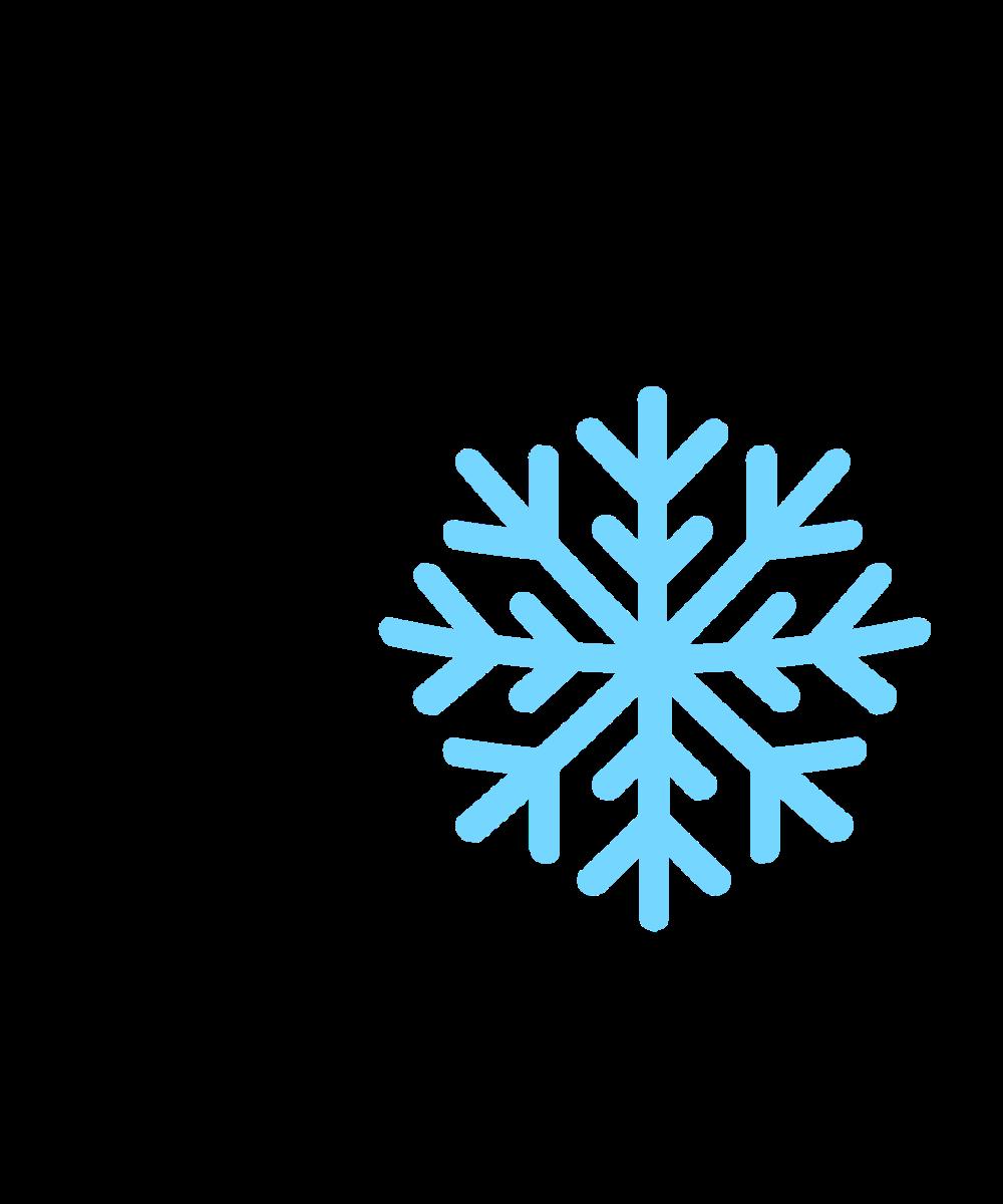 Snowflake Emoji.