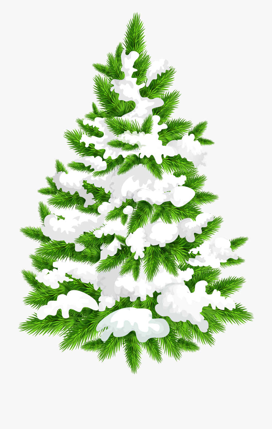 Image Library Library Snowy Tree Png Clip.
