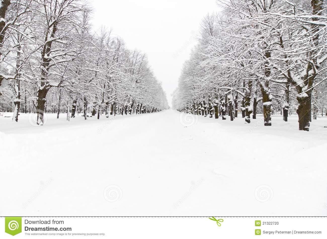 Snowy Park Stock Photo.