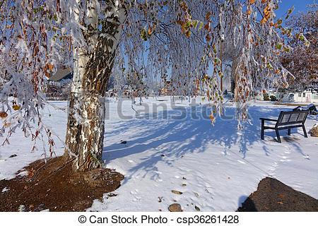 Stock Photo of Snowy Park.