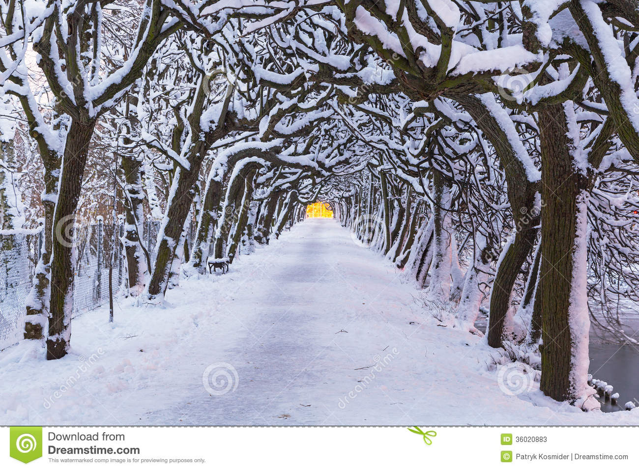 Winter Scenery Of Snowy Park In Gdansk Royalty Free Stock Photo.