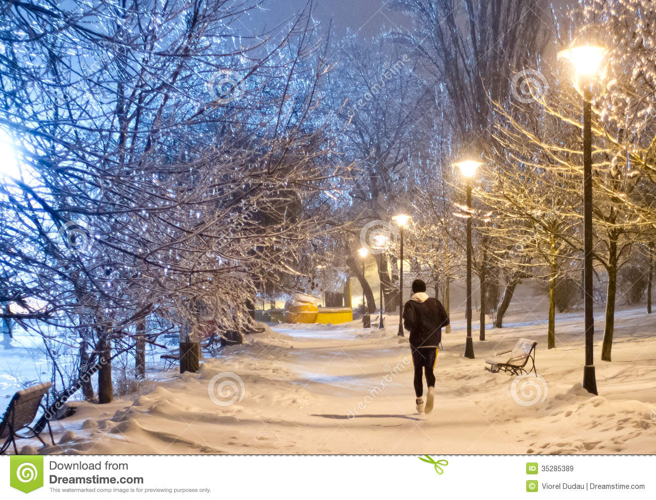 Night Running In The Snowy Park Royalty Free Stock Images.